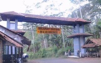 gerbang brebes salem