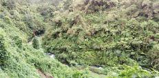 aliran sungai dewa raung