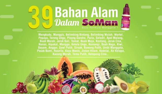 39 Bahan alami dalam SoMan