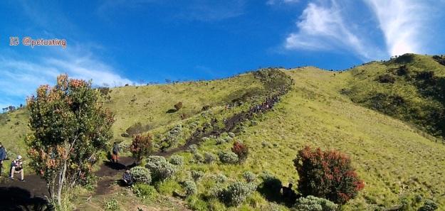 Tanjakan dari Watu Lumpang ke puncak Syarif