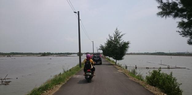 Jalanan menuju wisata mangrovesari