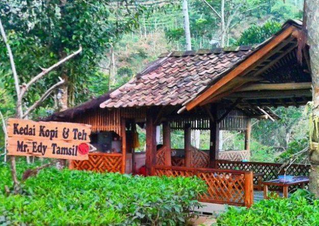 kedai kebun teh nglinggo